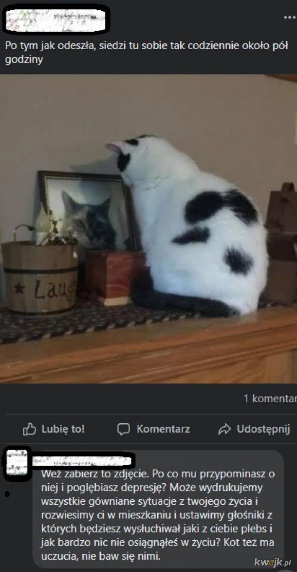 Nie rób tego swojemu kotu