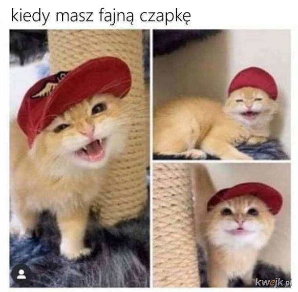 Pozytywne memy, obrazek 15