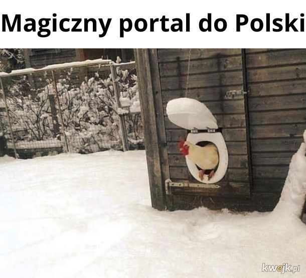 Portal do Polski