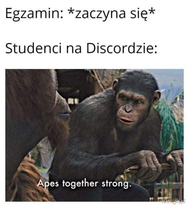 Zdalne egzamint