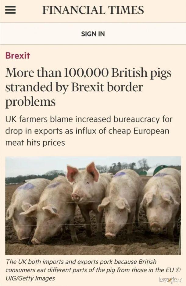 Brexit. Rzesze brytyjskich turystow utknelo za granicami.