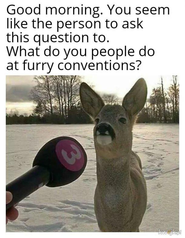 Furrycon
