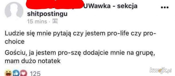 Profesorek