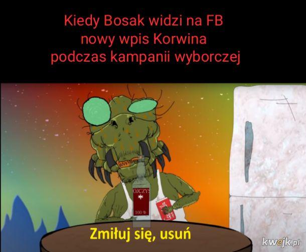 Krzysiu Bosak