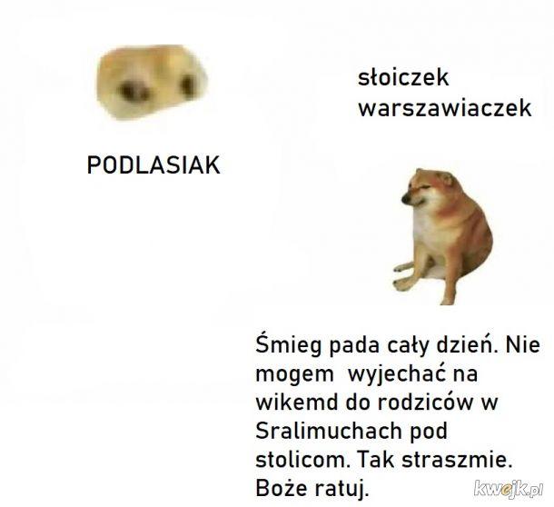 Obwiniaj Trzaskowskiego