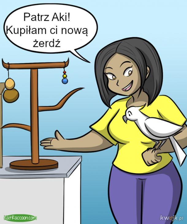 Komiks o kupowaniu udogodnień dla zwierząt (z ruchomymi kadrami)