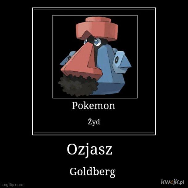 Tak nazwałem mojego Probopassa Ozjasz Goldberg
