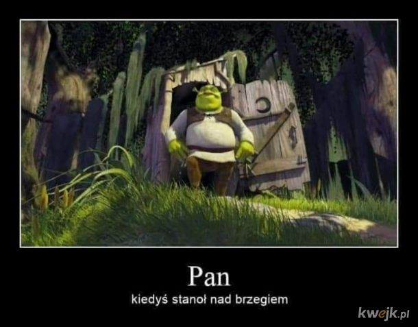 Shrek, to byłaby zajebista galerai #1