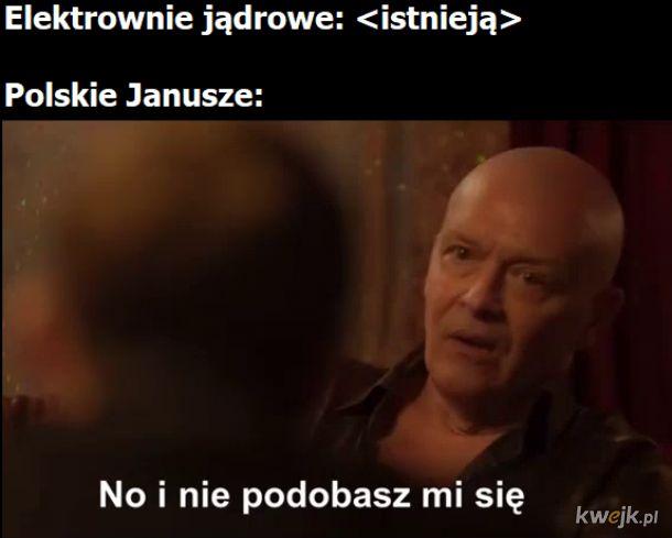 Jądrówki