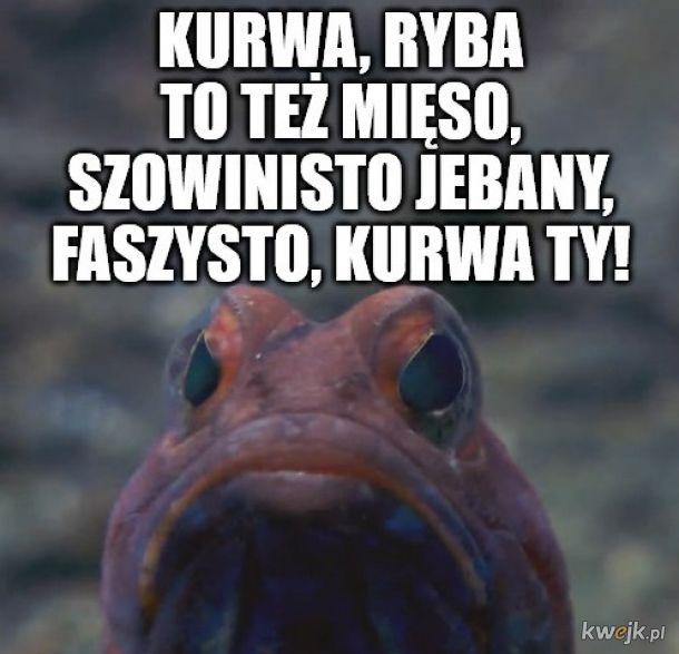 Oficjalne stanowisko ryb