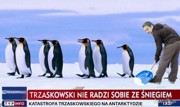 Źródło: TVP INF(ERN)O