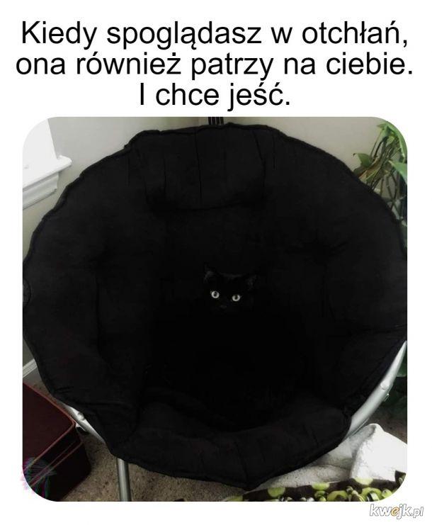Domowa czarna dziura