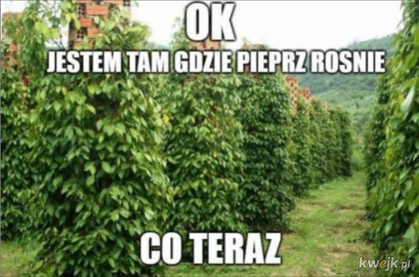 Pieprz