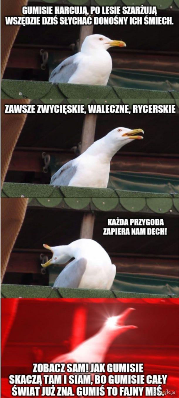 Strzelam, że tego memika wyśpiewałeś xd