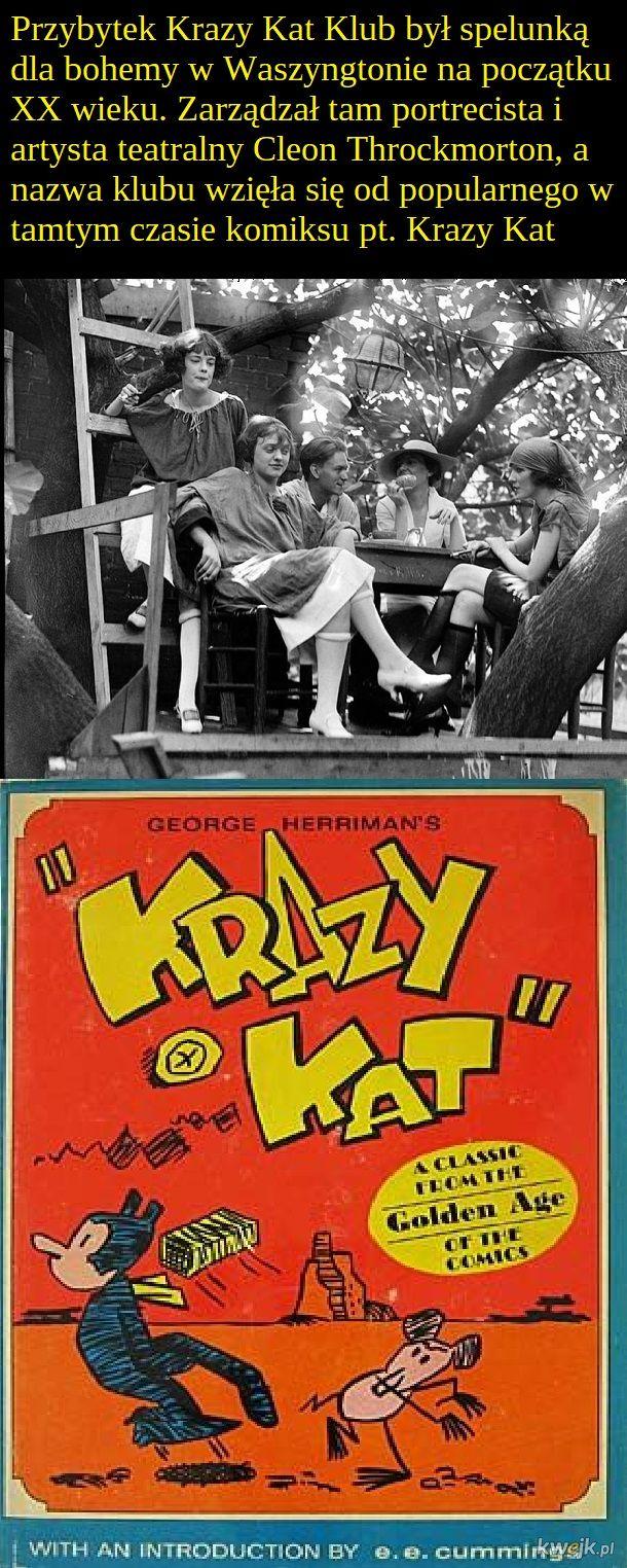 Podziemny bar Krazy Kat Klub – domek na drzewie z gorzałą, który funkcjonował podczas prohibicji w Stanach