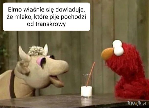 Moo-moo madafaka