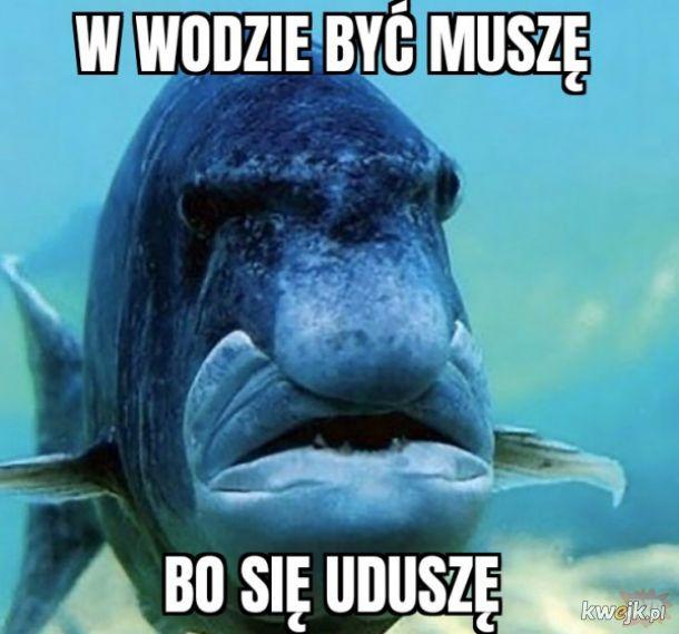 George fish