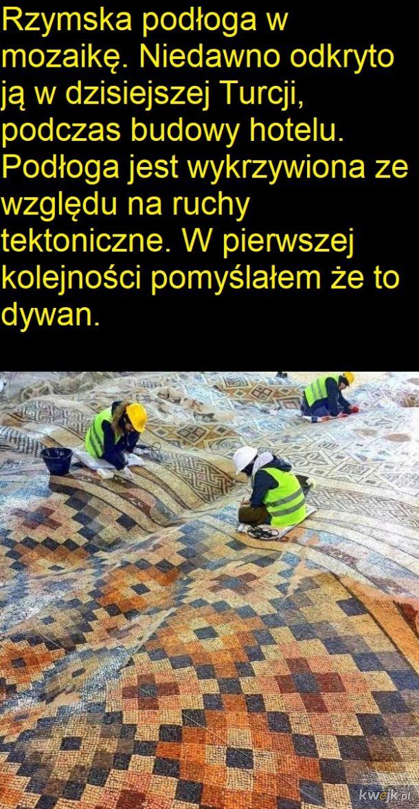 Wykopaliska przeszkadzają w budowie