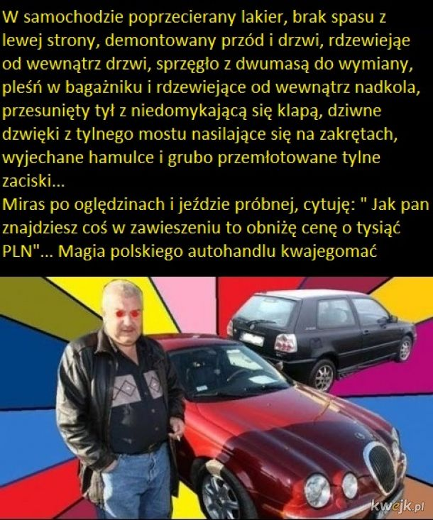 Mirasy i inne dziwowiska polskiej fauny motoryzacyjnej