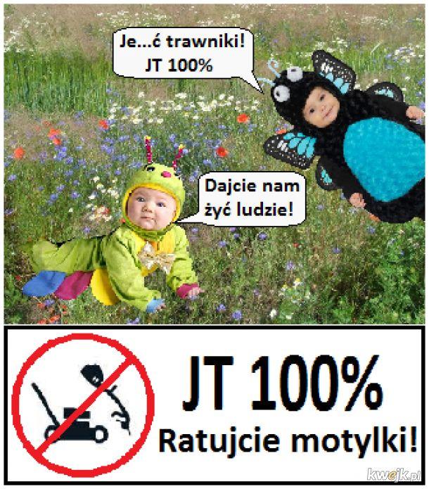 Nie zamieniajmy wszystkiego w trawniki!
