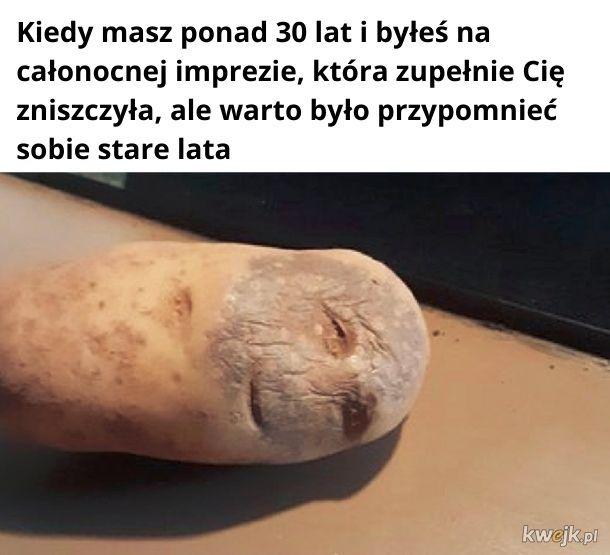 Imprezowy, zniszczony ziemniak