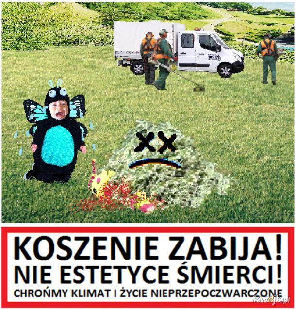 Państwo Łąkowe za życiem ... w trawie