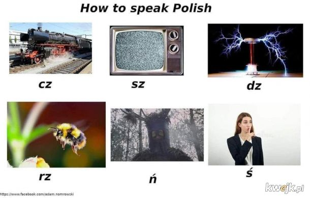 Polski dla opornych