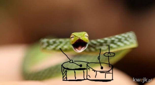 Węże z dorysowanymi rączkami, obrazek 5