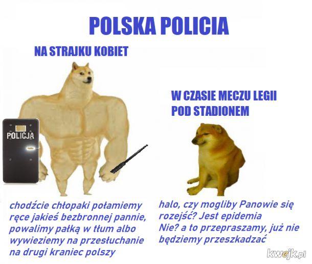 Polska Policia