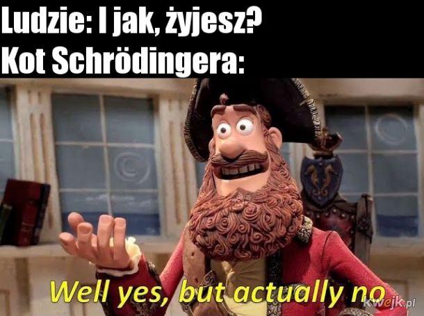 Kot Schrödingera.