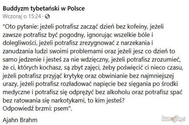 Wypraszam sobie! Nigdy nie byłem w policji!