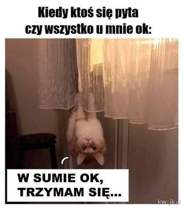 W sumie OK...