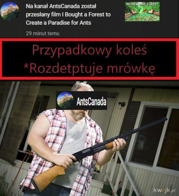 Rich madafaka