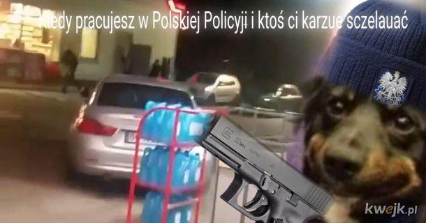 Polskua Policyja