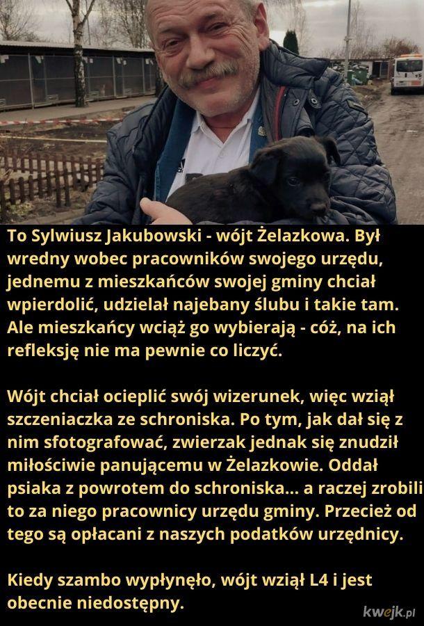 Gratulacje dla Żelazkowa, że takich ludzi wybieracie.