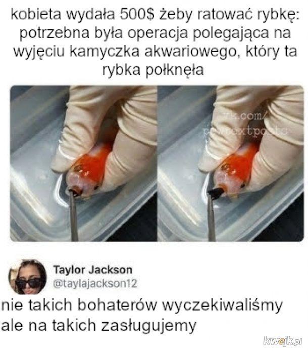 Medycyna złotej rybki