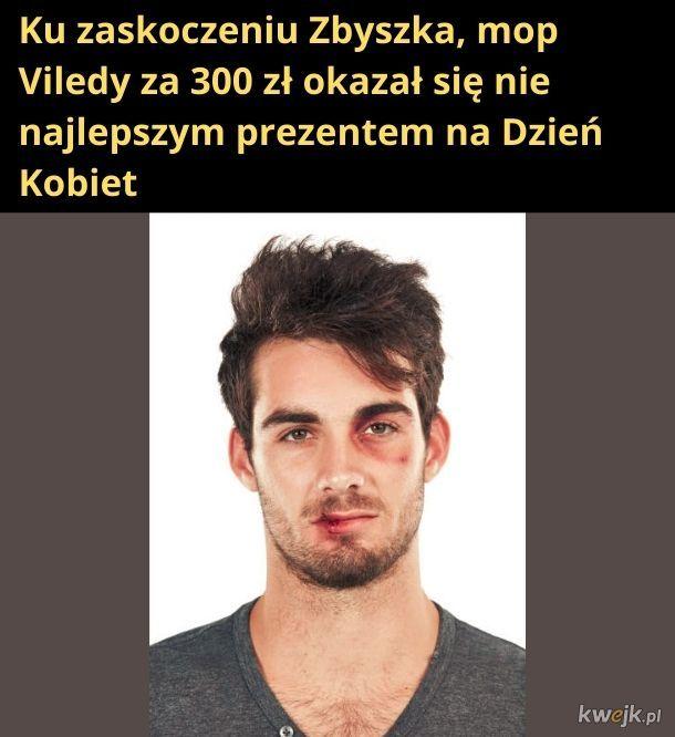 Mop Viledy