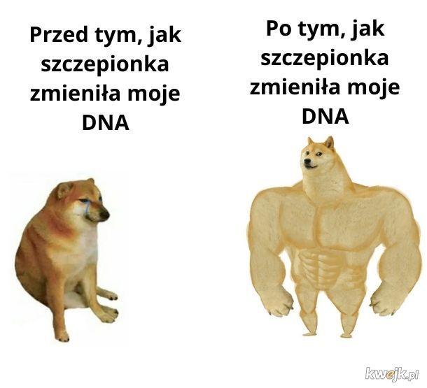 Moje DNA nie było najlepsze
