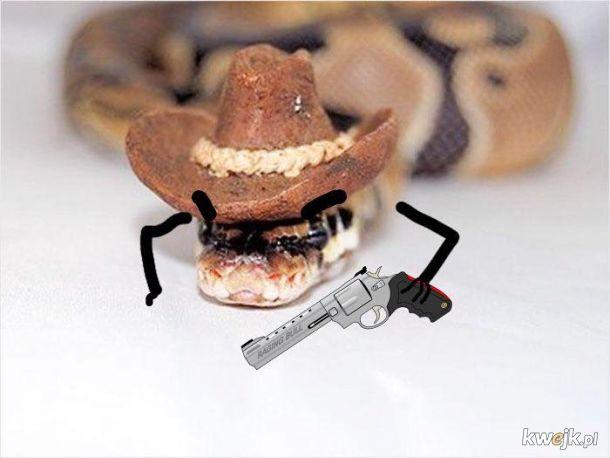 Węże z dorysowanymi rączkami, obrazek 25