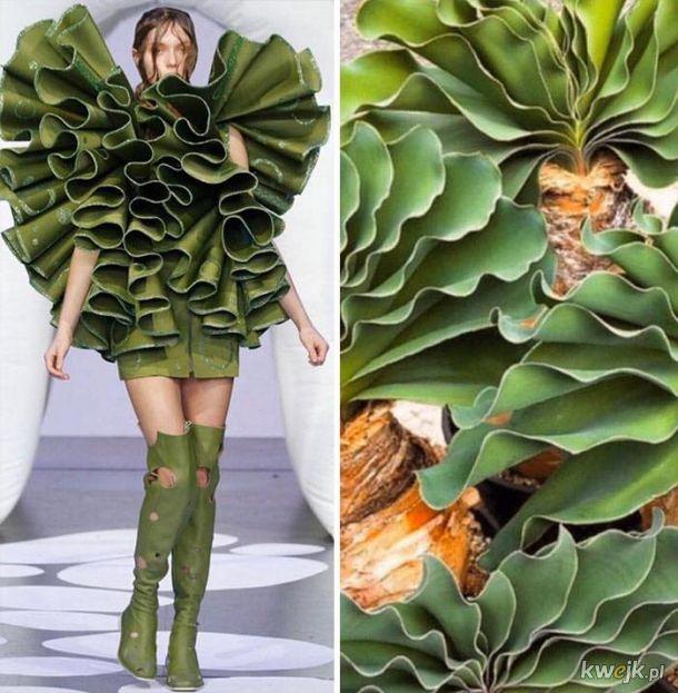 Moda inspirowana naturą