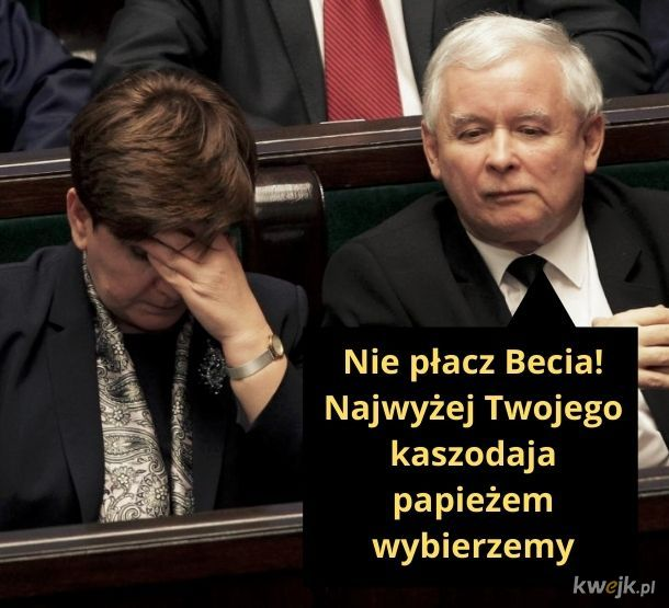 A Stolicą Piotrową będzie Toruń