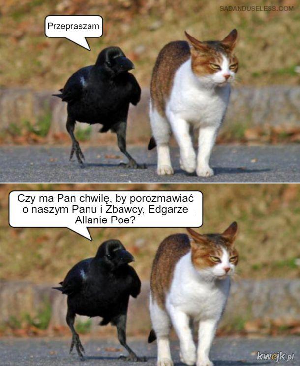 A czy Wy znajdujecie czas dla świadków Edgara Allana Poe?