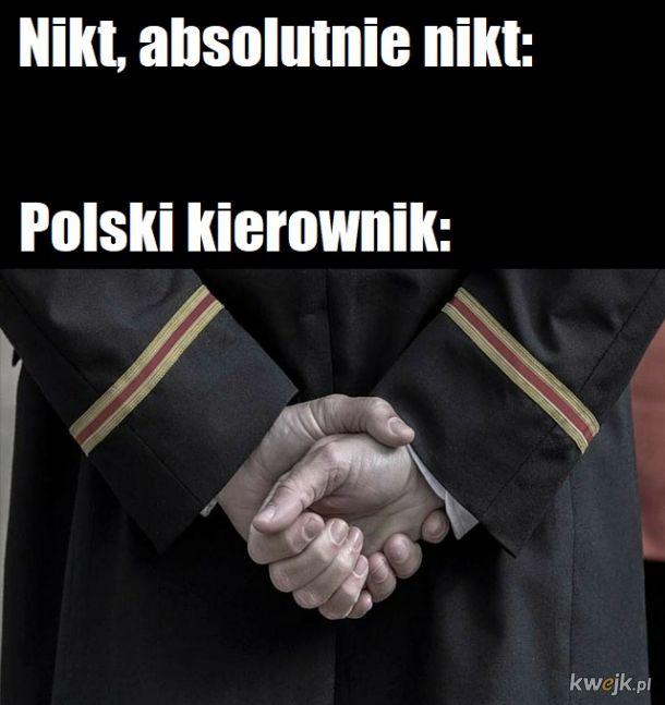 Polski kierownik
