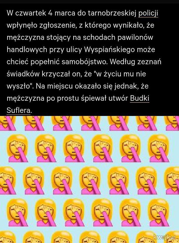 Polska to kraj debili