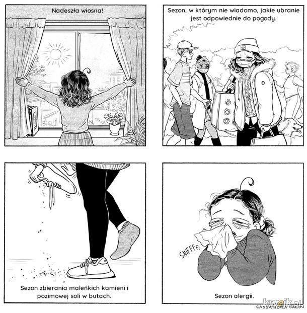 Komiksy Cassandry Calin
