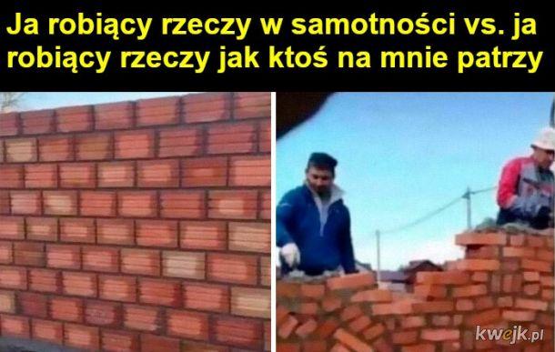 Memy o introwertykach, obrazek 10