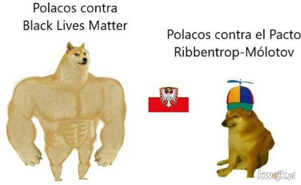 Jak widza Polske za granica