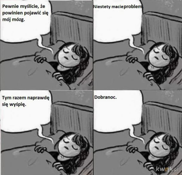 Mózg przed snem