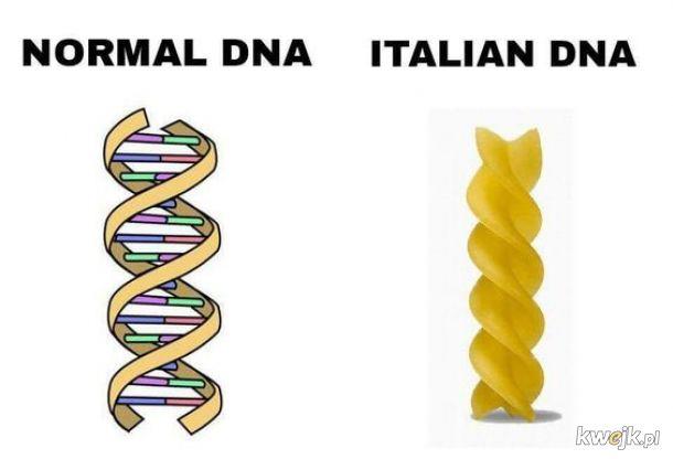 DNA Italian