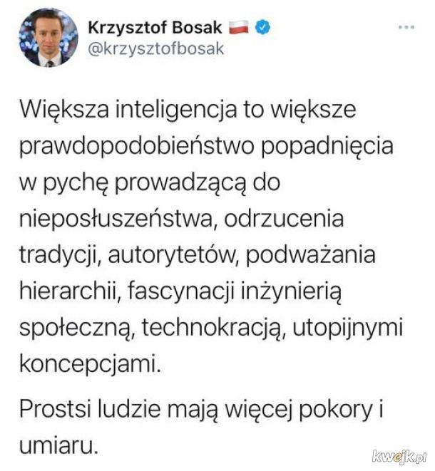 Krzysztof Bosak ostro o swoich wyborcach i kolegach z partii